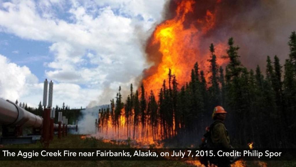 The Aggie Creek Fire near Fairbanks, Alaska, on July 7, 2015. Credit: Philip Spor