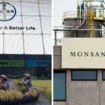 Bayer-Monsanto Merger: Endangering Our Health, Food, Farms & Planet