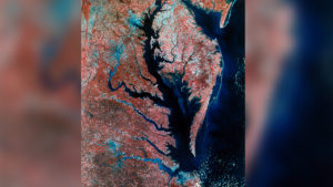 'Inconvenient Truth': Without 'Bold Measures' the Chesapeake Bay Is in Dire Trouble (Pt 2/2)