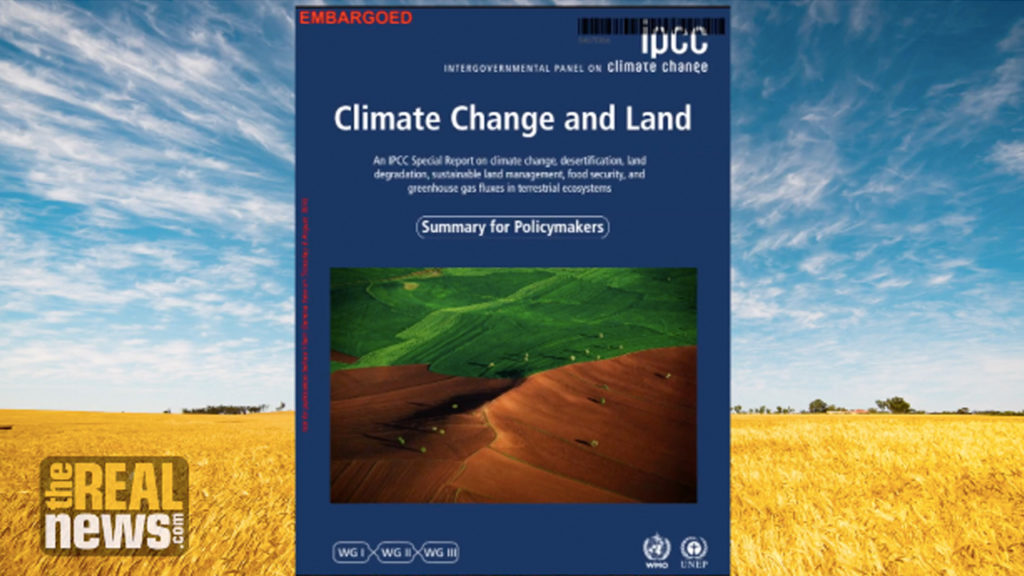 Land use and food consumption contributes to climate change, United Nations finds