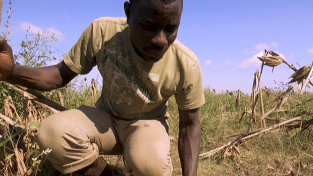 Mozambique's Farmers Face Food Crisis