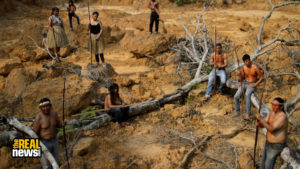 EU Shares Blame For Amazon's Destruction, Research Shows